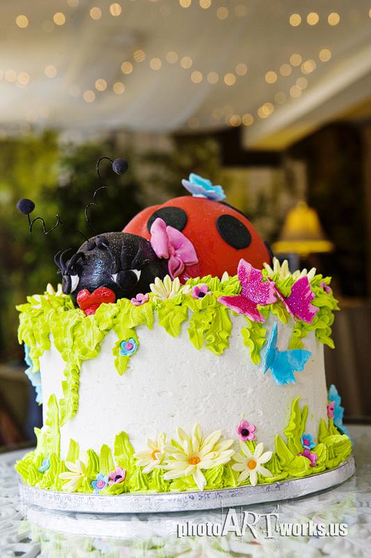 Laney's Ladybug